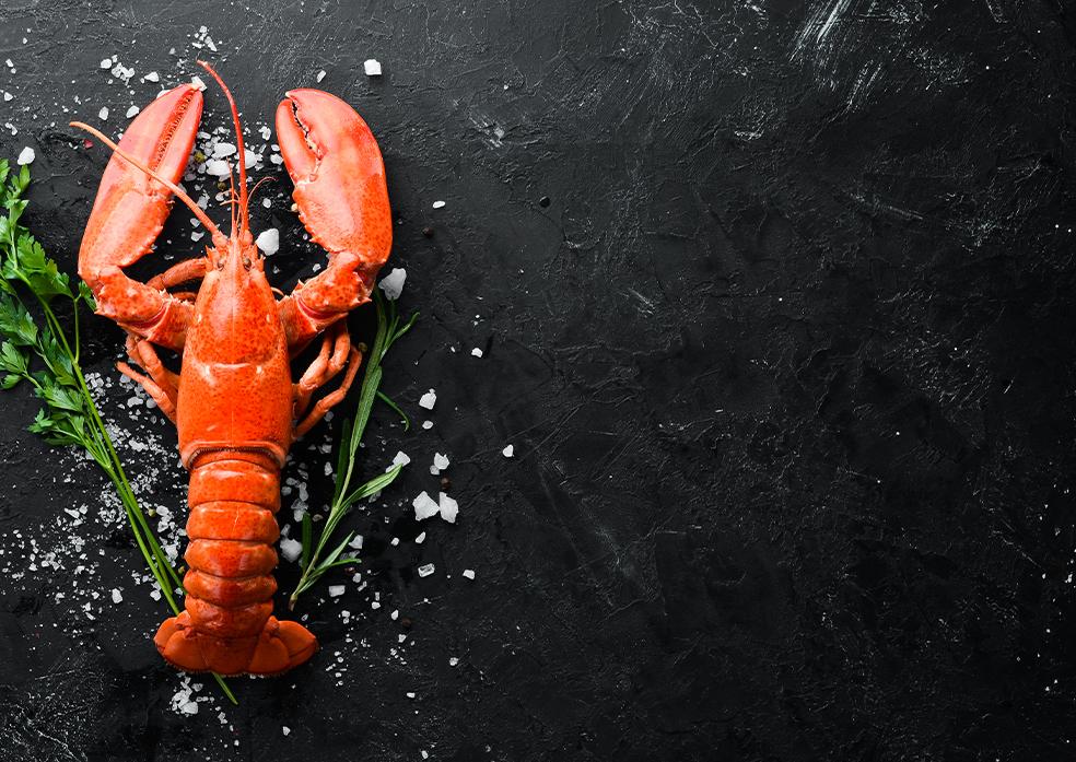 lobster back
